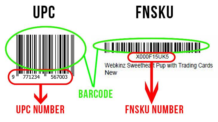 6-FNSKU-(Fulfillment-Network-Stock-Keeping-Unit)