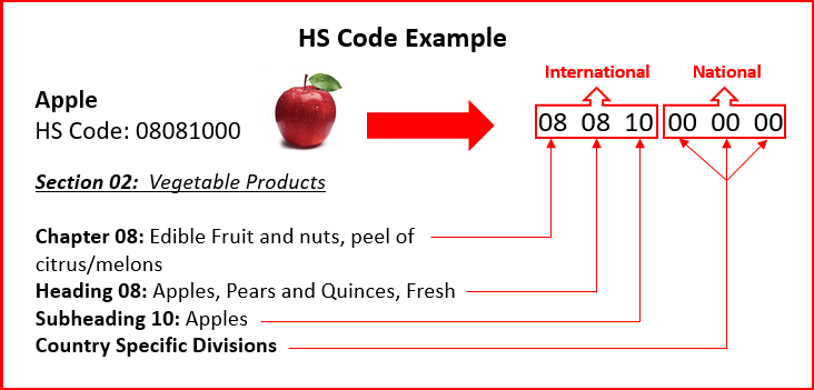 HS coding
