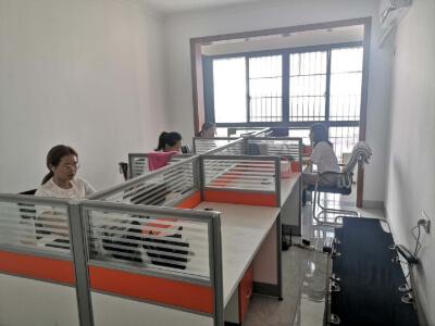 13.Hunan Lesen Xinpin Electronics Co., Ltd