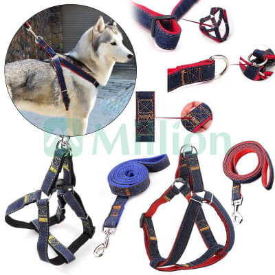 9-Pet-Collars-Leashes