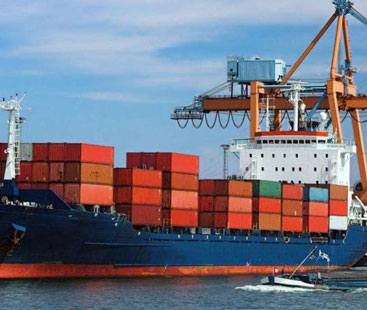 Baby products Sea Freight From Shipping