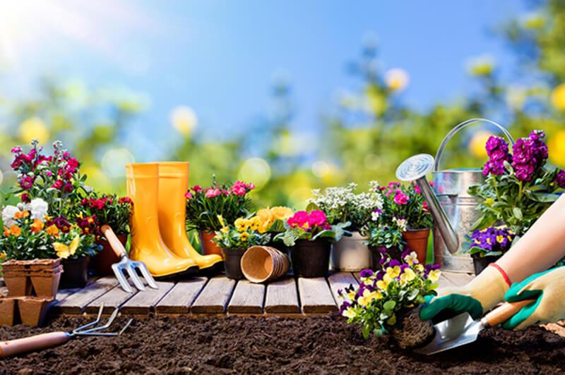 Garden Supplies 2