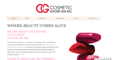 12. Cosmetics Group the USA