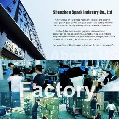 3.Shenzhen Spark Industry Co., Ltd