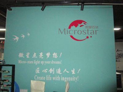 2.Yiwu Microstar Commodities Co., Ltd.