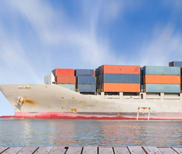 Tent Sea Freight From Shipping
