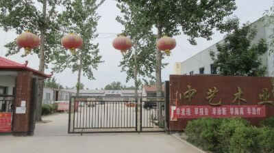 10.Caoxian Zhongyi Wooden Co., Ltd.