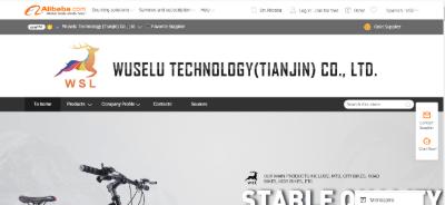 10.Wuselu Technology (Tianjin) Co., Ltd