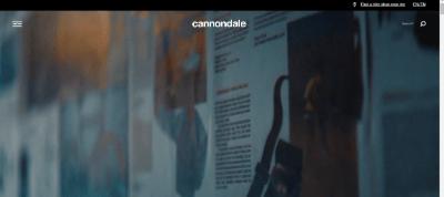 11.Cannondale