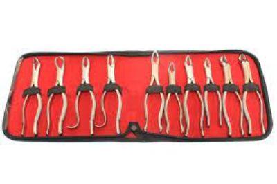 10. Dental Kit